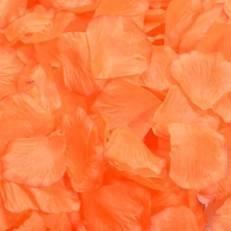Оранжевые лепестки роз