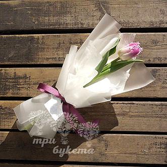 Мини-букет из тюльпана